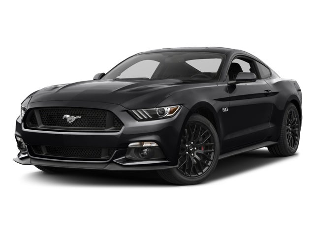 ford mustang 2dr fastback gt in greensboro nc ford mustang green. Cars Review. Best American Auto & Cars Review
